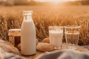 Молоко и молокопродукты станут дороже в преддверии пасхальных праздников. Прогноз эксперта. Новости Украины