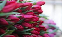 8 марта: какой сегодня праздник, приметы, именинники и запреты