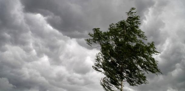 Морозы и сильный ветер: погода в Днепре 9 марта