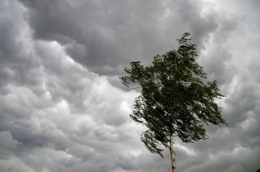 Новости Днепра про Морозы и сильный ветер: погода в Днепре 9 марта