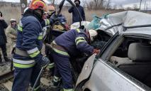 Под Павлоградом электричка протаранила иномарку: водитель погиб (ВИДЕО)