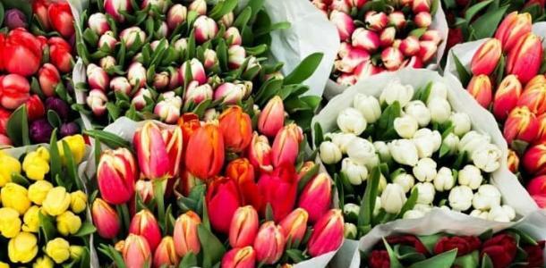 Днепр утонул в цветах: во сколько мужчинам обойдется праздник