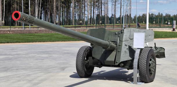 Министерство обороны закупило боеприпасы по цене 900 евро за штуку — экс-нардеп