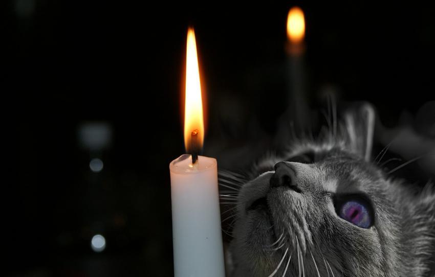 Субботний день в полной темноте: где не будет света 6 марта. Новости Днепра