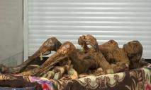В Днепре нашли мумифицированный труп мужчины