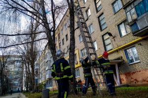Новости Днепра про Кот застрял на 9-метровой высоте, как спасали (ФОТО)