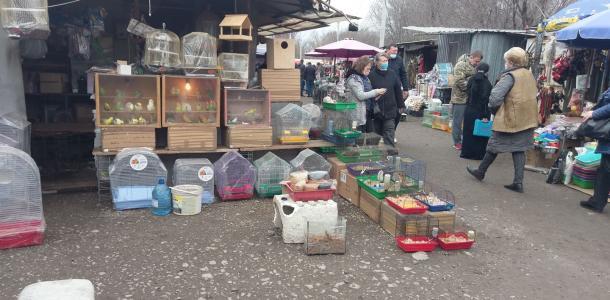 Как сейчас выглядит знаменитый «Птичий рынок» Днепра. ФОТО