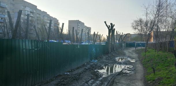 Кронавирус в Днепре: жители делятся изуродованными деревьями