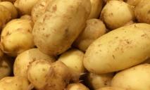 В супермаркете Днепра продают картошку по цене килограмма свинины