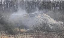Должностные лица устроили свалку химических и животных отходов на территории более 44 га