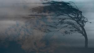 Новости Днепра про В Днепре объявлено штормовое предупреждение