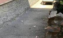 Кафель летит прямо на голову: в одной из школ Днепра осыпаются стены