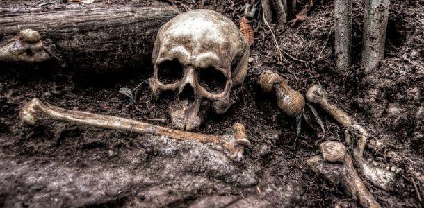 Человеческие останки нашли на пустыре в Днепре: идентификация продолжается