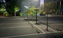 С деревьями и вазонами: в Днепре появилась первая эко-парковка (ФОТО)