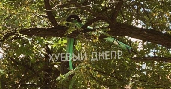 Как и зачем: электросамокат Bolt в Днепре забросили на дерево