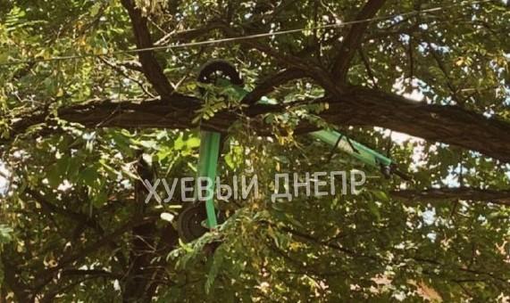 Новости Днепра про Как и зачем: электросамокат Bolt в Днепре забросили на дерево