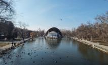 В парке Глобы озеро превратилось в болото с трупами уток
