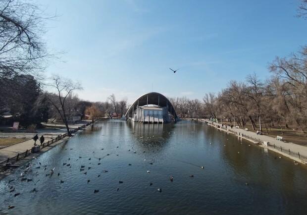 Новости Днепра про В парке Глобы озеро превратилось в болото с трупами уток