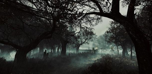 На Чаплинском кладбище в Днепре размыло могилы: появился трупный запах