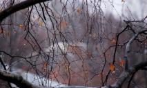 Ветер, холод, дождь и даже мокрый снег: днепрян ждет суровая осень