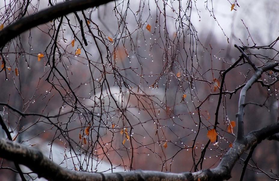 Новости Днепра про Ветер, холод, дождь и даже мокрый снег: днепрян ждет суровая осень