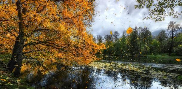Погода в Днепре в субботу, 25 сентября: пасмурно, возможен дождь