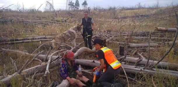 В Павлограде волонтеры разыскали бабушку, которая потерялась и провела ночь в лесу