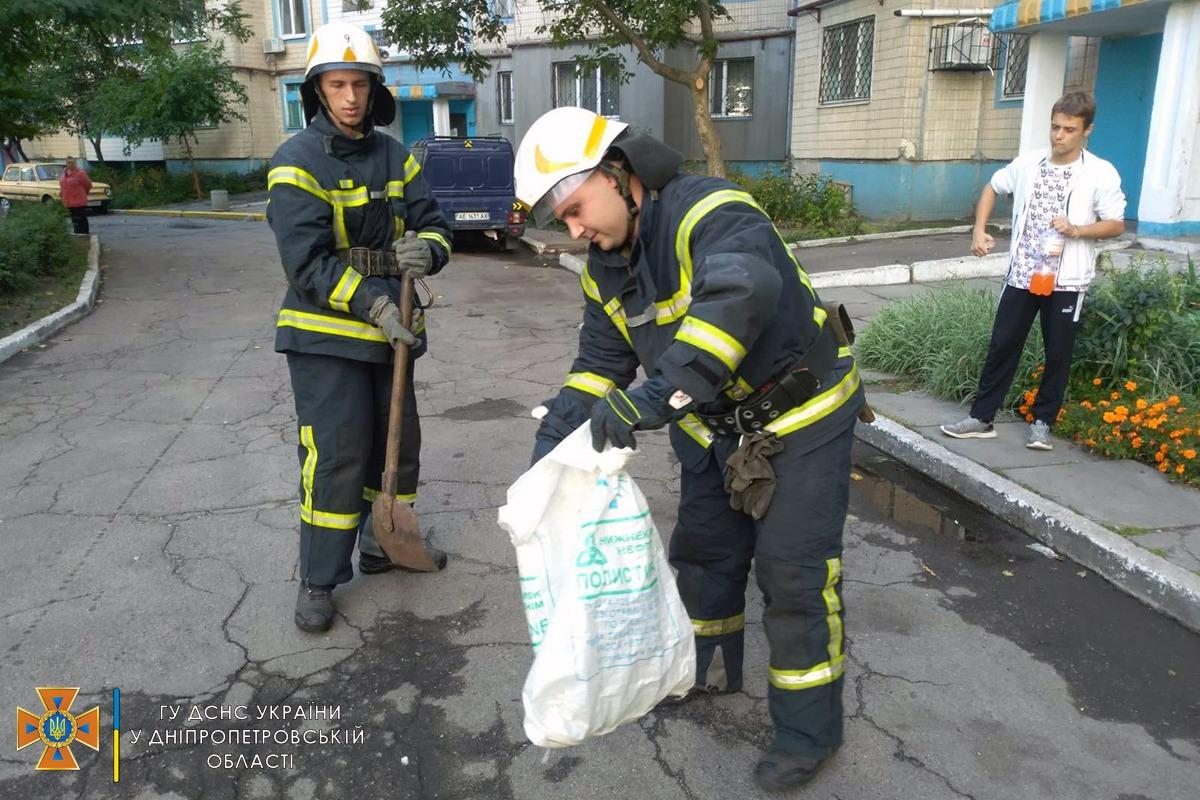 Новости Днепра про Под Днепром метровая змея распугала жителей многоэтажки