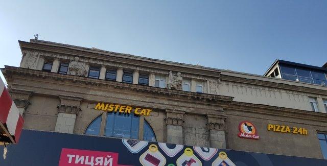 Новости Днепра про В центре Днепра охранник пиццерии Mister Cat избил посетителей (ВИДЕО)