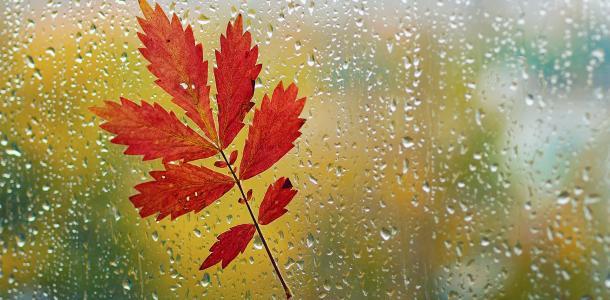 В воскресенье в Днепре будет дождливо