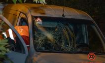 Смертельное ДТП: Opel сбил женщину под Днепром: что известно