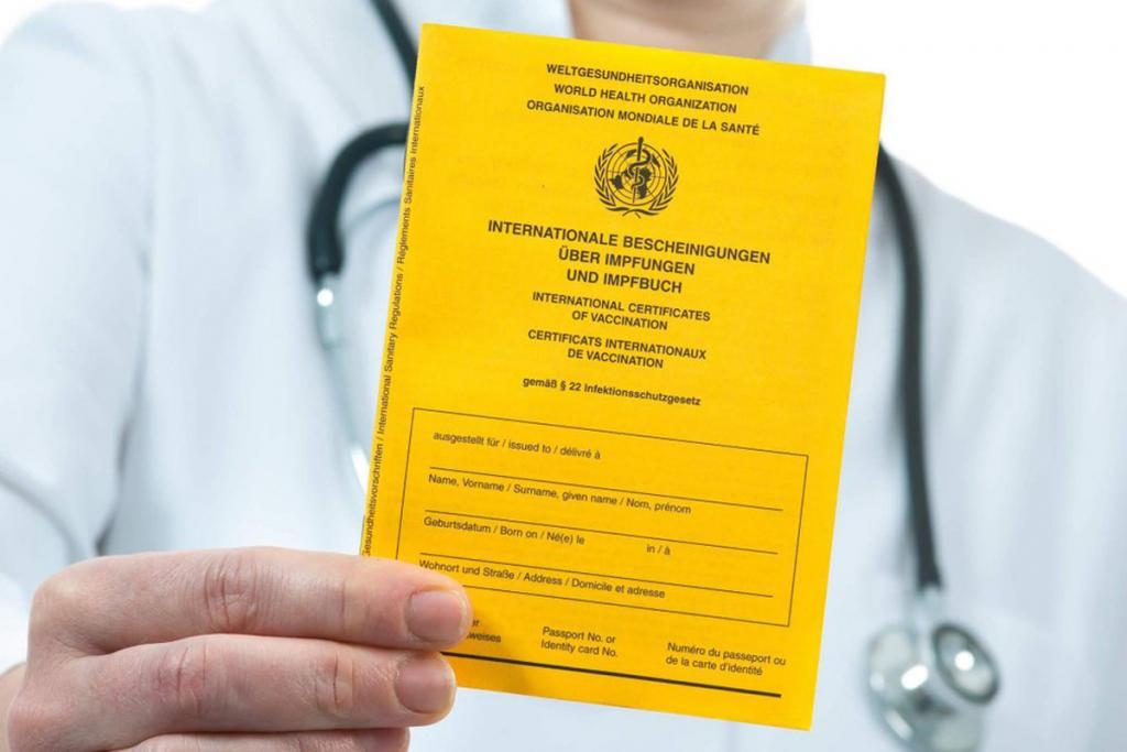 Новости Днепра про Днепрянам выдадут желтые и зеленые сертификаты вакцинации: в чем разница