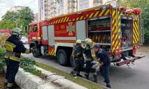 На Владимира Антоновича загорелась квартира местного Плюшкина (ВИДЕО)