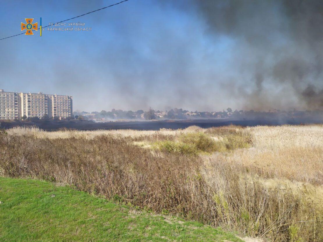 Новости Днепра про Весь город в дыму: на Харьковщине масштабный пожар