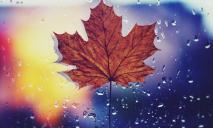 Погода в Днепре в четверг, 14 октября: дождливо и пасмурно