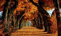 Погода в Днепре во вторник, 26 октября: ясно и без осадков