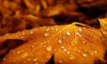Погода в Днепре в субботу, 23 октября: ожидается сильный дождь