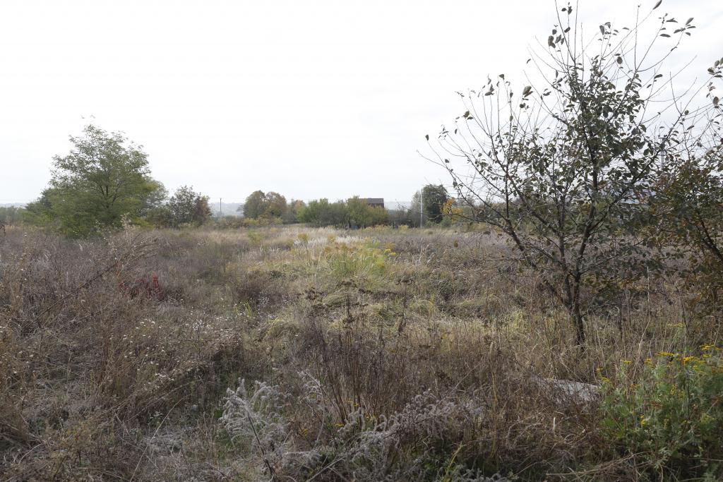 Новости Днепра про Бесплатная приватизация земли и различные социальные услуги: как в Днепре заботятся о защитниках