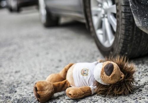 Новости Днепра про Мальчик, которого сбили с собакой на Игрени, умер в больнице