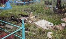 Чтобы знать в лицо: в Краснополье поймали очередных кладбищенских вандалов